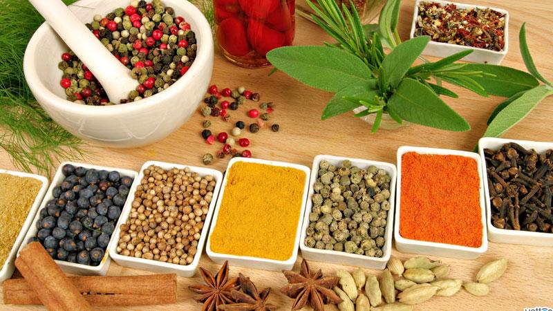 Ayurveda la medicina indiana